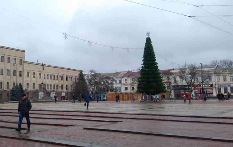 У Кропивницькому старий каркас – нове штучне убрання. Фото 0522.ua