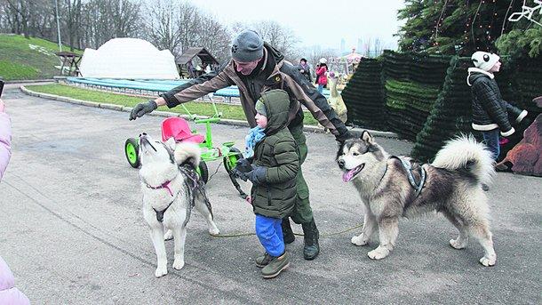 """Зоопарк. Собаки просто обожнюють бути в центрі уваги. Автор фото: Григорій Салай, """"Сегодня"""""""