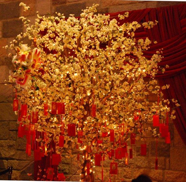 Китайське дерево світла