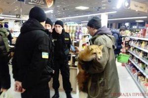 Під Києвом в магазині розгорівся скандал через покупця з лисицею