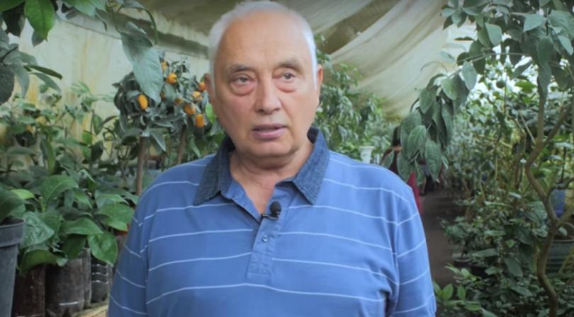 Під Києвом фермер виростив найбільший ананас в світі (відео)