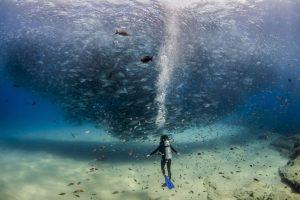 10 кращих фотографій року за версією читачів National Geographic