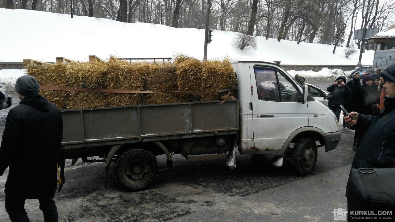 У центрі столиці вилили тонну молока (фото, відео)