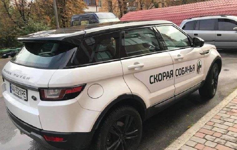 У Києві з'явилася «швидка» для безпритульних собак (фото)