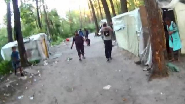 В мережі опублікували відео нападу ромів на екологів у Києві