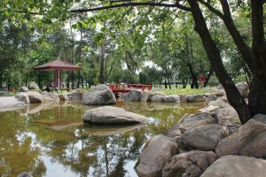 У столичному парку з'явилися водоспад і японський сад каменів (фото)