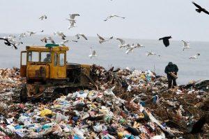 Почалися роботи із закриття головного сміттєзвалища Києва