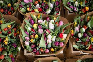 Привіт весні. Обираємо подарунок на 8 березня