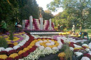 На Співочому полі відкриється «музичний» фестиваль хризантем