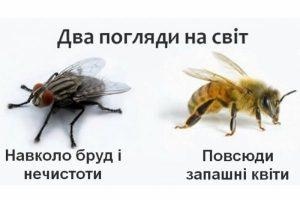 Два погляди на світ. Хто ви: муха чи бджола?
