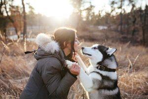 Собаки впливають на тривалість життя своїх господарів – вчені