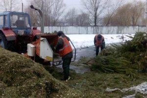 У Деснянському районі відкрився пункт переробки новорічних ялинок (фото)