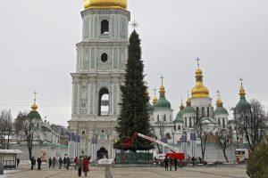 На Софійській площі почали прикрашати головну ялинку країни (фото)