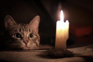 Понад 100 тисяч киян можуть залишитися під Новий рік без електрики