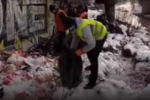 Набережну Либеді очистили від сміття (відео)