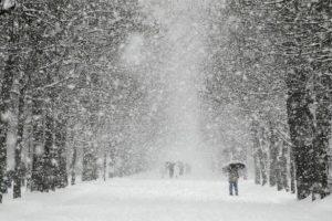 Хуртовини, дощ та ожеледиця: Синоптики розповіли про сюрпризи погоди