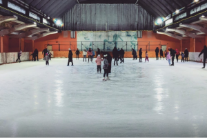 У Києві реконструюють льодову арену «Крижинка»