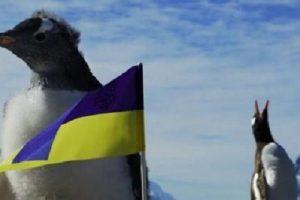 Порошенко переміг Зеленського на українській станції в Антарктиді